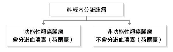 net小檔案